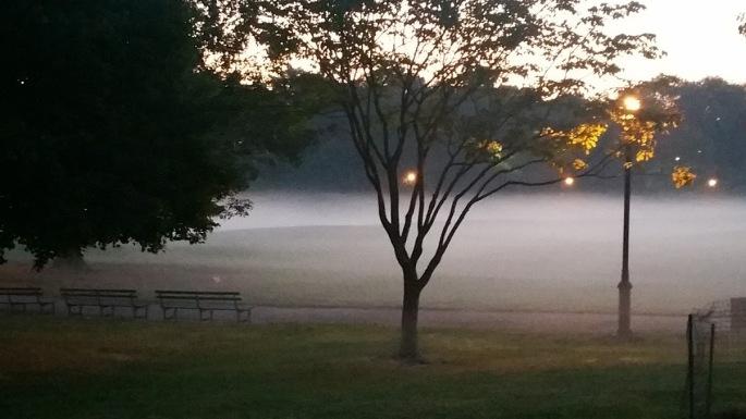 Foggy Park2.jpg